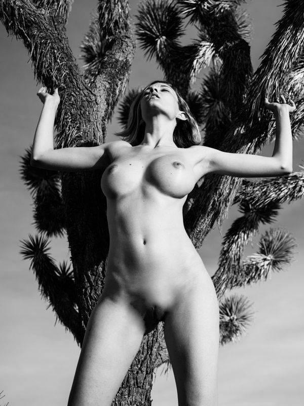 Nackt  Zahra Schreiber Dusty Rhodes